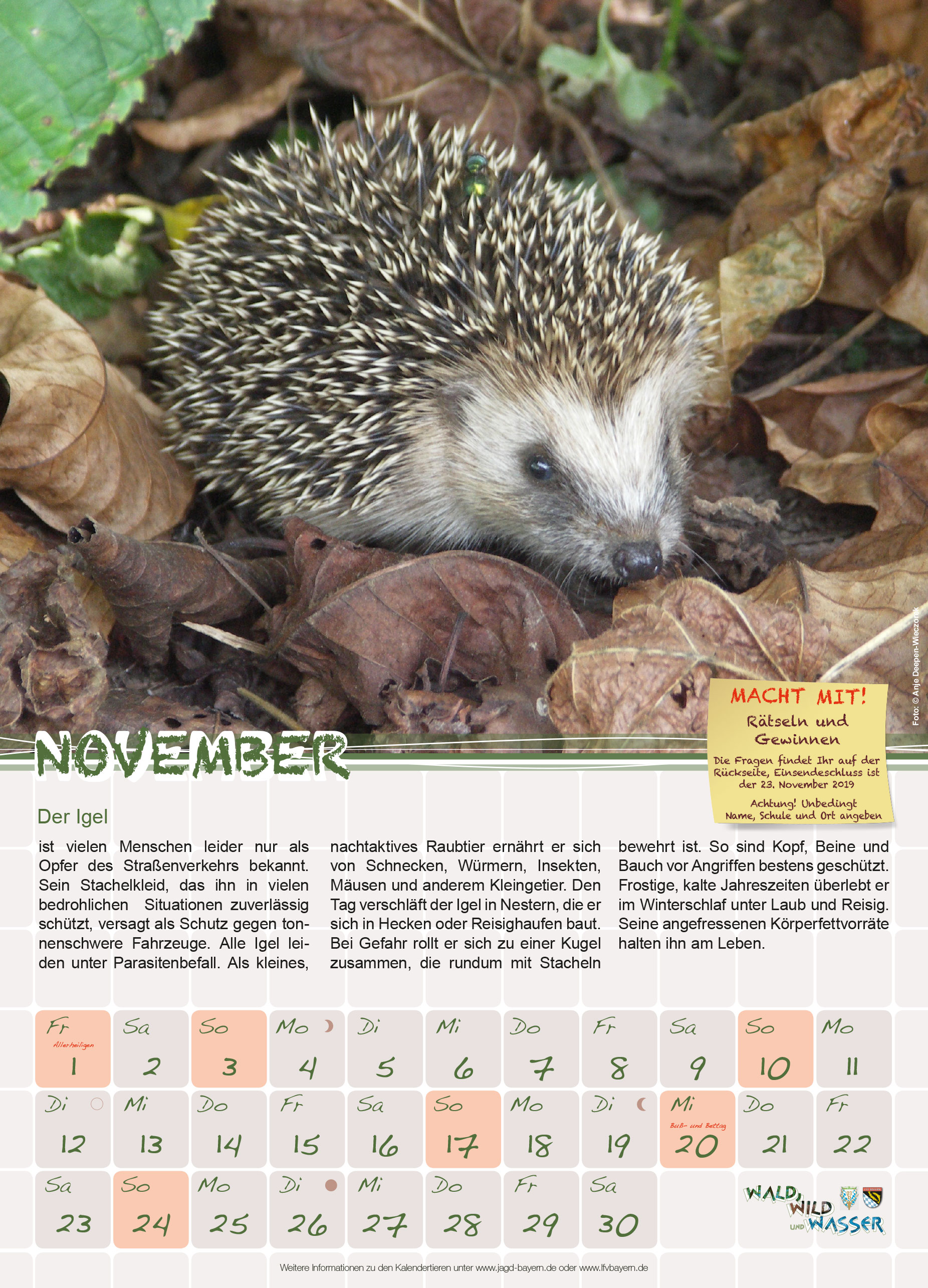 November Der Igel Landesfischereiverband Bayern