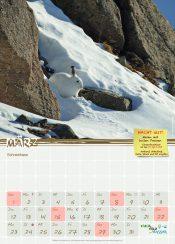 Schulkalender 2020 Schneehase